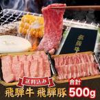 飛騨牛 ギフト 贈答用 送料無料 飛騨牛&飛騨豚 特選焼肉セット500g 牛特選カルビ300g 豚バラ200g
