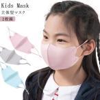 送料無料 接触冷感マスク 夏マスク 2枚組 子供マスク マスク 洗える マスク 子供用 キッズマスク ひんやり マスク 涼しい 夏用 マスク