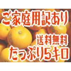 八朔 - ご家庭用訳あり八朔(はっさく) 5kg(わけあり 訳あり)(規格外 不揃い)