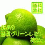 ご家庭用わけあり国産(和歌山有田産)レモン 約2kg(ノーワックス)(防腐剤不使用)(減農薬)(送料無料)(訳あり)(規格外)(不揃い)