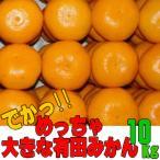 めっちゃ大きな有田みかん 約10kg(送料無料 /...