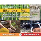 Yahoo!竹炭・竹酢液・竹粉の竹工房パンダ竹粉 竹パウダー エサ・飼料添加物 乳酸菌の力で鶏、牛、豚などのサプリメントに!孟宗ヨーグルト5kg(アルミ真空パック)