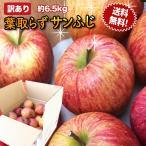 訳あり 葉取らずりんご 青森産 色むら有り サンふじ約6.5kg(20から25玉前後) 送料無料 ジュース 蜜入り リンゴ 産地直送