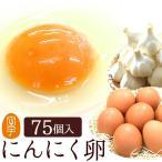 卵 高級 にんにく卵 75個入(生卵60個+破損保証15個) 皆でシェア 小分け用袋(ネ ット)無料 甘く生臭さニンニク臭無し 飲める養健卵
