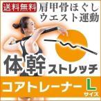 体幹 ストレッチ コアトレーナー 体幹ストレッチ Lサイズ アイリスオーヤマ 体幹 器具 トレーニング Lサイズ TSR-1265 フィットネス 筋力 ダイエット