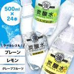 そのまま飲んでも、割ってもおいしい強炭酸水です。 ●原材料 水、炭酸 ●内容量 500ml×24本セ...