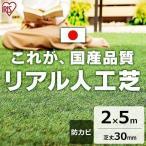 人工芝 diy 庭 ロール ベランダ リアル人工芝 IP-3025 アイリスソーコー お庭 幅30cm 2m×5m 簡単 カッター 庭 安い 芝生 ピン ジョイント
