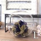 松野ホビー ハンギンググラスプランツ ラウンド L FR-968 ガラス製 花器 ハンギングプランツ エアプランツ アレンジメント 丸型