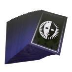 ペルソナ タロットカード 23種類 コスチューム用小物 P3 P4G P4U