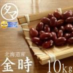 金時豆 10kg 北海道産 令和元年度産 キントキマメ まめ 豆 国産 無添加 無塩 無油 送料無料