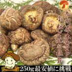 九州産 小粒 どんこ 250g 安心 安全 国産 原木育ち 干し 乾燥 しいたけ 椎茸 きのこ 送料無料