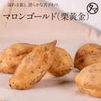 マロンゴールド 栗黄金 鹿児島産 2kg さつまいも サツマイモ お芋 スイーツ やさい 野菜 九州 焼き芋 いも 送料無料
