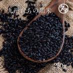 黒米 南九州産 200g クロマイ 有機肥料 黒紫米