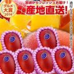 宮崎完熟マンゴー中玉 6玉 2020年度 フレッシュ 産地直送 くだもの 果物 フルーツ マンゴー 母の日 父の日 お中元 ギフト 送料無料