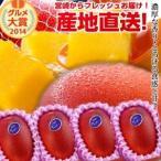 宮崎完熟マンゴー中玉 4玉 2020年度 フレッシュ 産地直送 くだもの 果物 フルーツ マンゴー 母の日 父の日 お中元 ギフト 送料無料