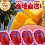 宮崎完熟マンゴー大玉 4玉 2020年度 フレッシュ 産地直送 くだもの 果物 フルーツ マンゴー 母の日 父の日 お中元 ギフト 送料無料