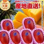 宮崎完熟マンゴー大玉 6玉 2020年度 フレッシュ 産地直送 くだもの 果物 フルーツ マンゴー 母の日 父の日 お中元 ギフト 送料無料