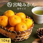 みかん 10kg 宮崎産 産地直送 味は抜群 見た目ちょいわる 家庭用 くだもの 果物 フルーツ 送料無料