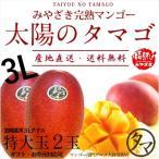 太陽のタマゴ 特大玉2玉 3L 2021年度 宮崎 マンゴー フレッシュ 産地直送 母の日 父の日 お中元 ギフト 果物 くだもの フルーツ 送料無料
