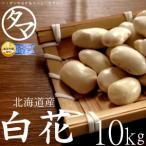 白花豆 10kg 北海道産 令和元年度産 無添加 遺伝子組み換えなし 国産 まめ 豆 生豆 業務用 送料無料