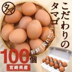 宮崎健康タマゴ100個 こだわりの飼料とマイナスイオン水で育てた濃厚な味わいのタマゴ