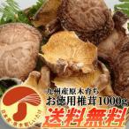 九州産原木乾し徳用椎茸 1kg 安心・安全な無農薬原木栽培