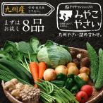 送料無料!九州で美味しい野菜をお届け!