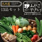 野菜セット 九州産 13品 宮崎産たまご付き