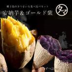安納芋 & ゴールド紫 種子島 夢芋セット 各1kg 合計2kg サツマイモ お芋 紫芋 あんのういも 蜜芋 さつまいも 送料無料