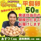 平飼い卵 50個 あすつく 純国産鶏 産地直送 朝採れ 朝どり 信州産 本州四国 送料無料 卵かけご飯 お菓子作り