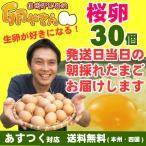 さくら卵 30個 あすつく 純国産鶏 産地直送 朝採れ 朝どり 信州産 本州四国 送料無料 卵かけご飯 お菓子作り