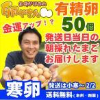 大寒卵 有精卵 50個 あすつく 純国産鶏 産地直送 信州産 本州四国 送料無料 卵かけご飯 お菓子作り
