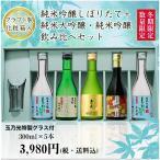 ショッピング日本酒 日本酒 TNW-5Y 純米吟醸しぼりたて+純米大吟醸・純米吟醸 飲み比べセット 300ML×5本 バレンタイン ネット限定