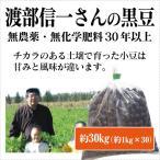 北海道産 無農薬黒豆「渡部信一さんの黒豆(約1kg×30袋)」 無農薬・無化学肥料栽培30年の美味しい黒豆 渡部信一さんは化学薬品とは無縁の生産者