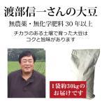 送料無料 業務用 無農薬大豆 渡部信一さんの大豆30kg(30kg×1袋)無農薬・無化学肥料栽培30年の美味しい大豆 北海道産