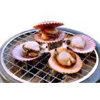 貝類 - 三重県産・ 産地直送 桧扇貝(ヒオウギ貝) 15個 8cm前後