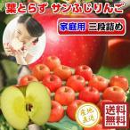 サンふじ りんご 葉とらず 三段詰め(約15kg) 54-60玉前後 ご家庭用ランク 訳あり