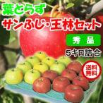 青森県産 葉とらずりんご サンふじ 王林 セット 5kg 18-20玉前後 秀品・贈答用ランク