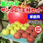 青森県産 葉とらずりんご サンふじ 王林 セット ご家庭用 5kg 20玉前後 クール送料無料