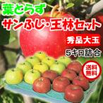 青森県産 葉とらずりんご サンふじ 王林 セット 5kg 14-16玉前後 秀品大玉 贈答用ランク