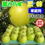 王林 りんご 葉とらず 3kg 10-12玉前後 ご家庭用ランク クール送料無料
