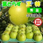 王林 りんご 葉とらず 3kg 10-12玉前後 秀品 贈答用ランク クール送料無料