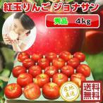 紅玉 りんご ジョナサン 4kg・28-30玉前後 秀品贈答用ランク