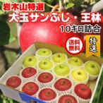サンふじ 王林セット りんご 10kg 32玉前後 青森県産 特選大玉 送料無料