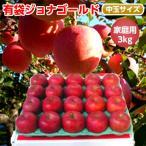 青森りんご 有袋ジョナゴールド 3kg 10-12玉前後 ご家庭用中玉 訳あり 低温冷蔵りんご(CA)