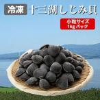しじみ 十三湖 青森県産 中粒 冷凍 しじみ貝 1kg