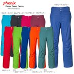 PHENIX〔フェニックス スキーウェア〕Demo Team Pants PF572OB12〔z〕