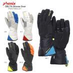 ショッピングスキー PHENIX 〔フェニックス グローブ〕<2016>DELTA Gloves Over PS578GL31〔z〕