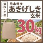 玄米 令和2年産 熊本県あきげしき棚田米 30kg