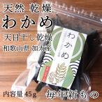 和歌山県産 乾燥わかめ 天日干し 国産 暮らしの応援クーポン 45g入 保存食